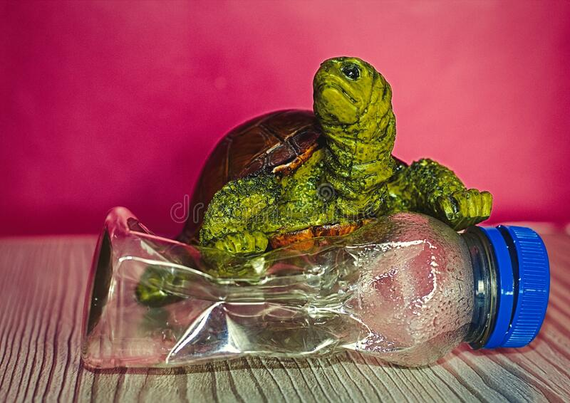 Turtle Crushing A Plastic Single Use Bottle Climate Change Style Poster. Pink Background stock images