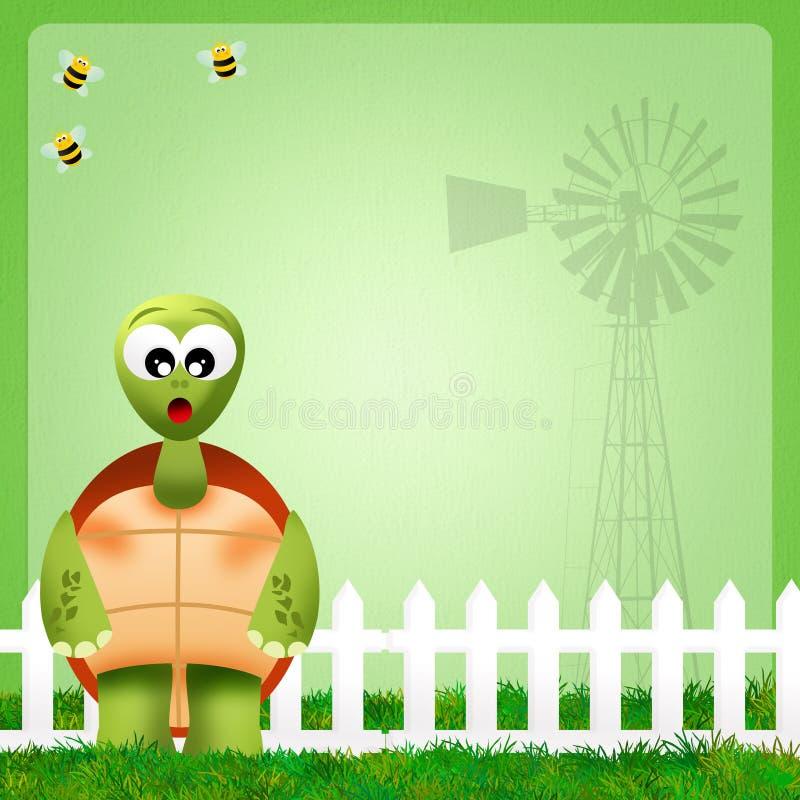 Download Turtle stock illustration. Illustration of frame, animals - 37062672