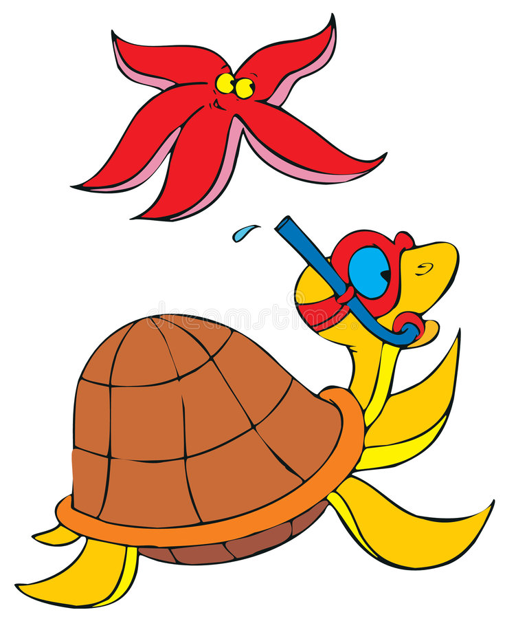 Turtle and sea star vector illustration