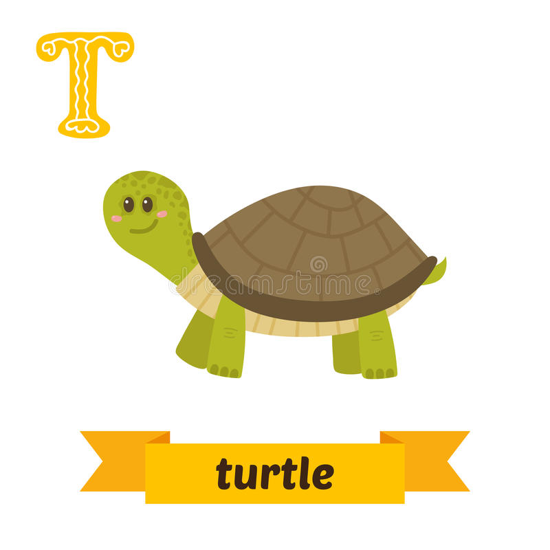 Turtle. T letter. Cute children animal alphabet in vector. Funny royalty free illustration