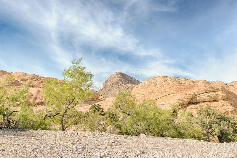 Turtlehead-Spitze von den Kaliko-Behältern, roter Felsen Cyn, Nanovolt lizenzfreies stockfoto