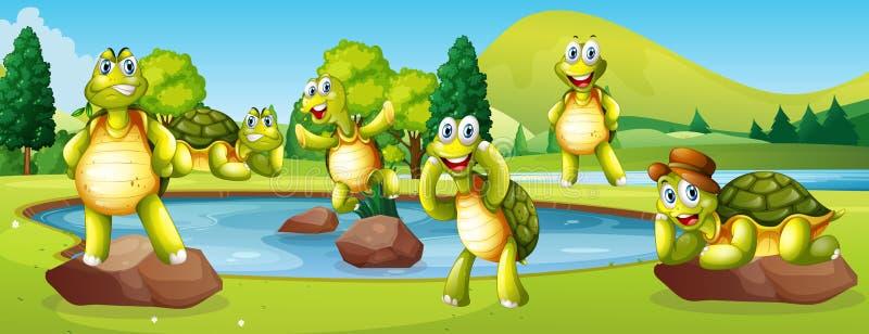 Turtles in pond scene vector illustration