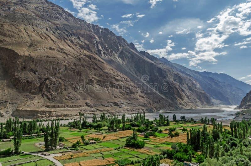 Turtuk wioska w Nubra dolinie Ladakh, India zdjęcie stock