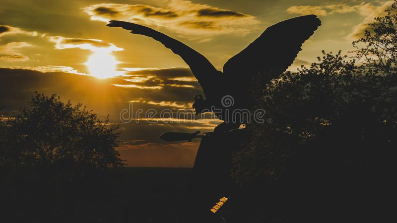 Turul bird sunrise in Tatabánya-Hungary royalty free stock images