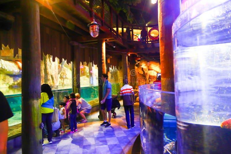 Turyści cieszą się akwarium zdjęcia stock