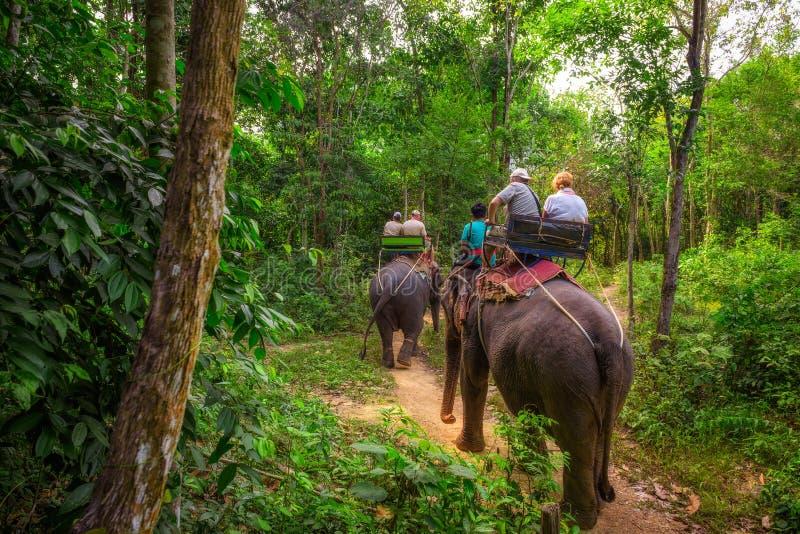 Turyści Jedzie słonie W Tajlandia zdjęcie stock