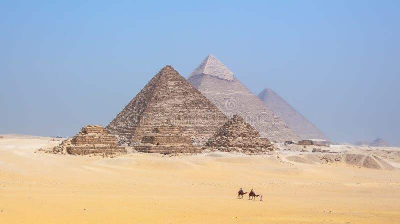 Turyści jedzie wielbłądy przy ostrosłupami przy Giza w Egipt obraz stock