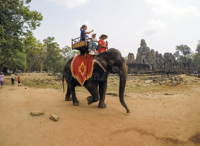 Turyści ma słoń przejażdżkę przy Angkor Wat świątynią - Siem Przeprowadza żniwa, Kambodża obrazy royalty free