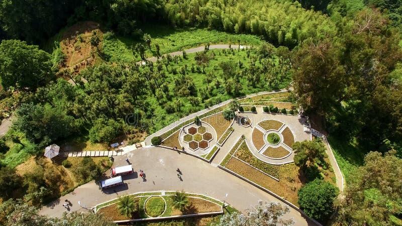Turyści odwiedzają ogród botanicznego Batumi, naturalny zwiedzający miejsce, środowisko zdjęcie royalty free
