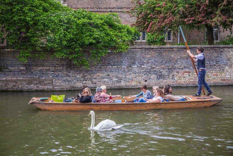 Turyści w łodzi na kanałowym dopatrywaniu łabędź, Cambridge, Anglia, 21st Maj 2017 obrazy royalty free