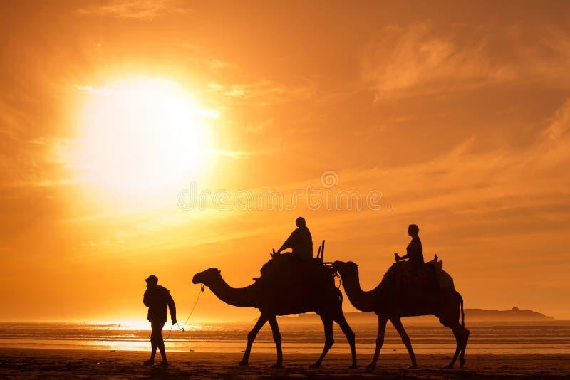 Turyści w Afryka zdjęcie stock