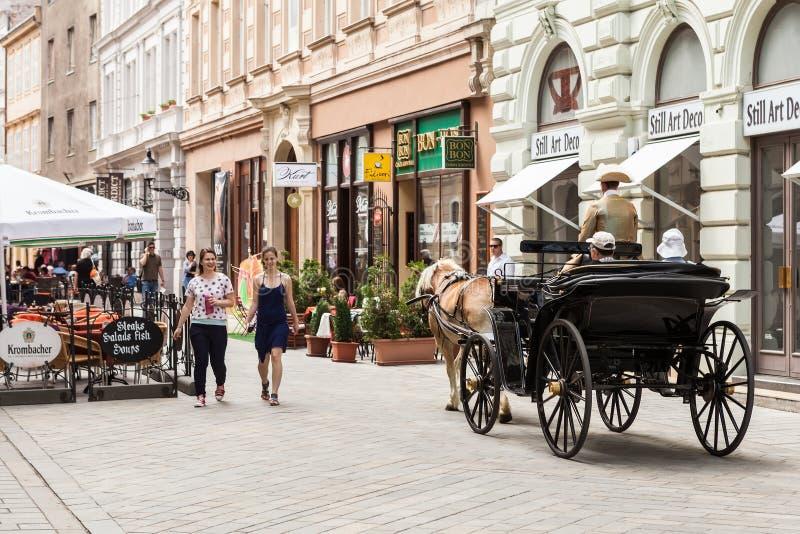 Turyści w końskim frachcie w Bratislava, Sistani obraz stock