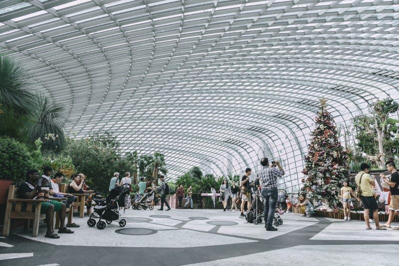 Turystów wewnątrz Inside Obłoczna lasowa kopuła zdjęcie stock