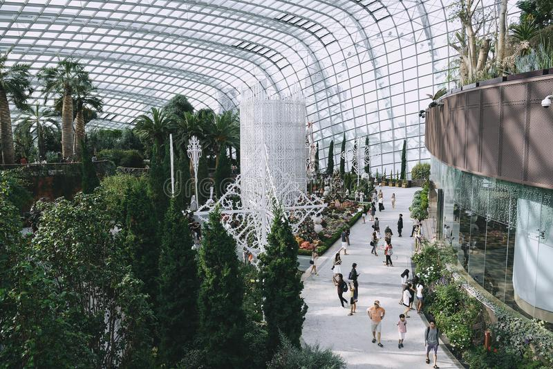 Turystów wewnątrz Inside Obłoczna lasowa kopuła obrazy stock