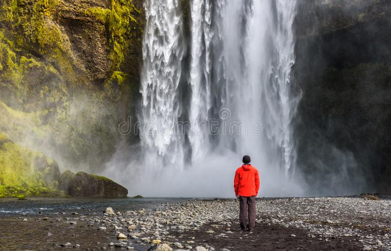 Turysta przy Skogafoss siklawą w południowym Iceland obraz stock