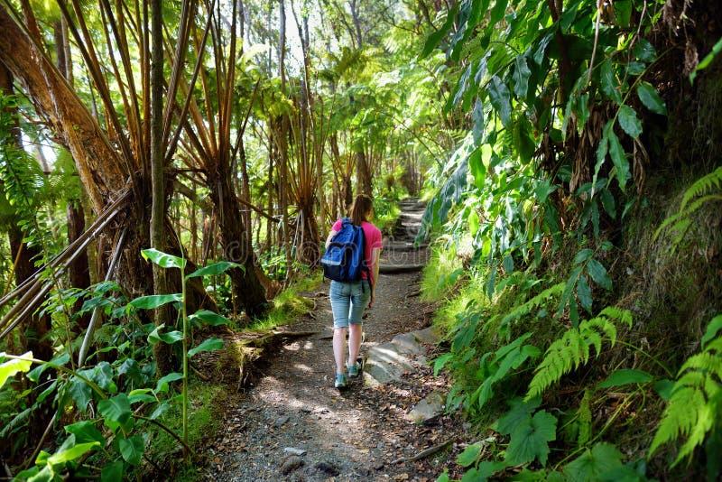 Turysta wycieczkuje na Kilauea Iki śladzie w Volcanoes parku narodowym w Dużej wyspie Hawaje zdjęcia stock