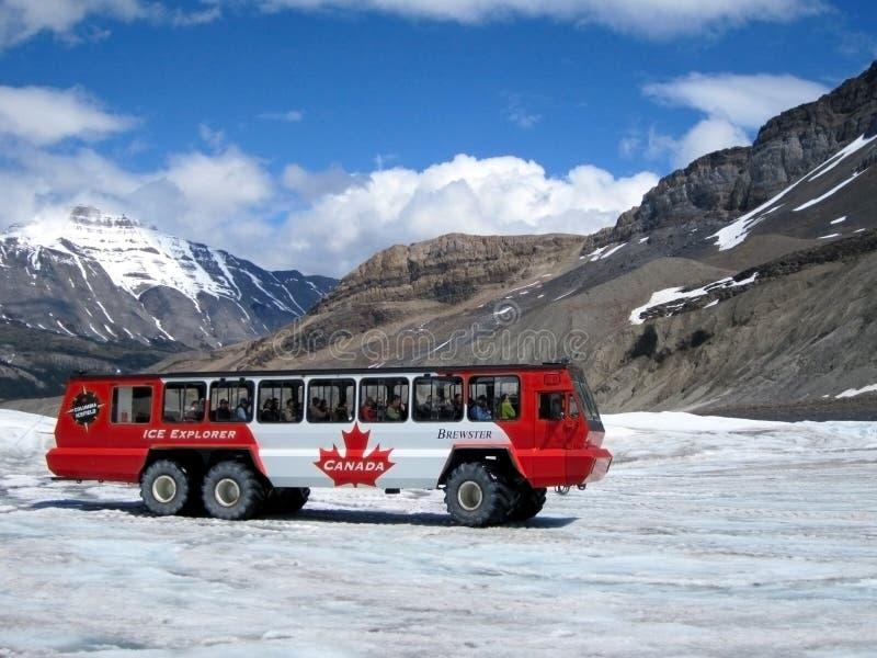 Turysty autobus przy Śnieżnym kopuła lodowem, Kanada obraz stock