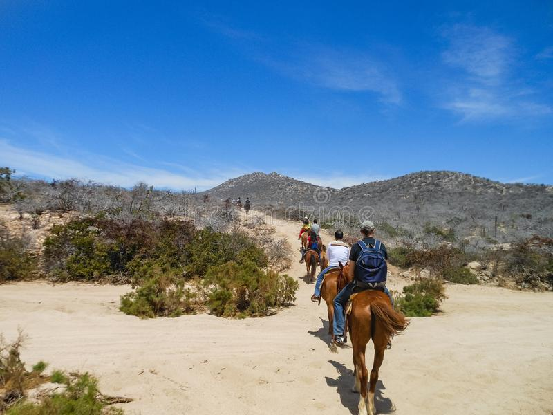 Turysty horseback jazda na plaży w Cabo San Lucas, baja california obraz stock