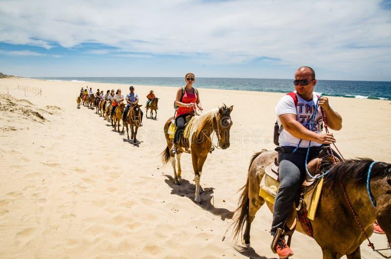 Turysty horseback jazda na plaży w Cabo San Lucas, baja california fotografia stock