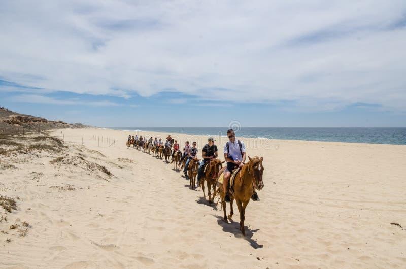 Turysty horseback jazda na plaży w Cabo San Lucas, baja california obraz royalty free
