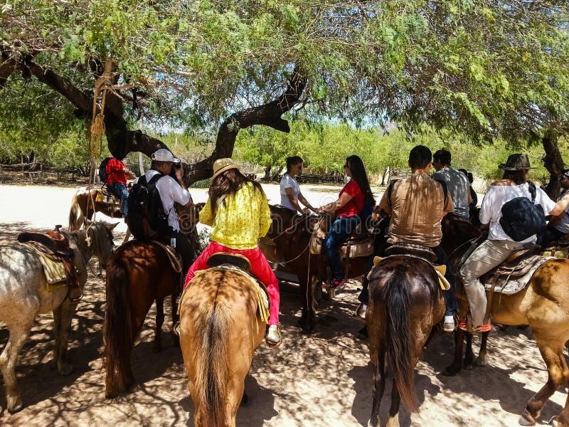Turysty horseback jazda na plaży w Cabo San Lucas, baja california fotografia royalty free