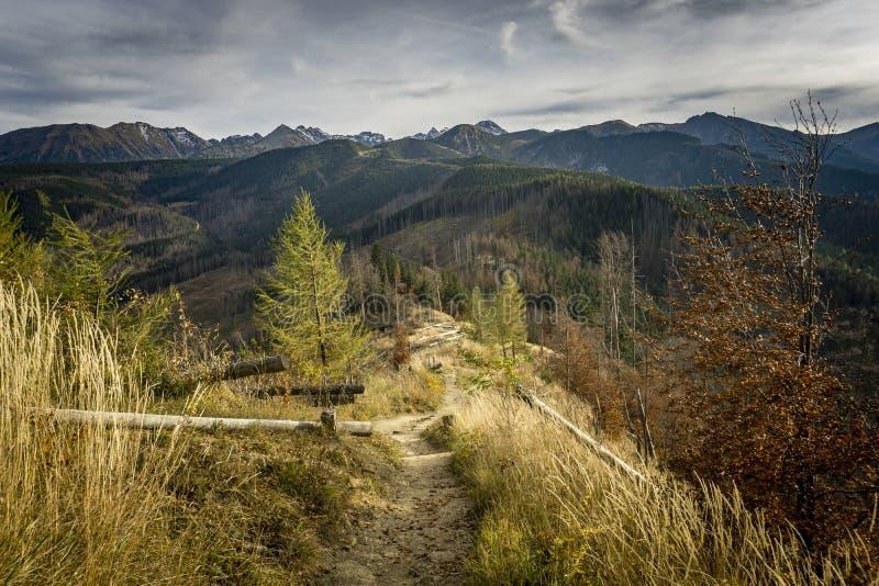 Turystyczny ślad w jesień krajobrazie Nosal Tatrzańskie góry obraz stock