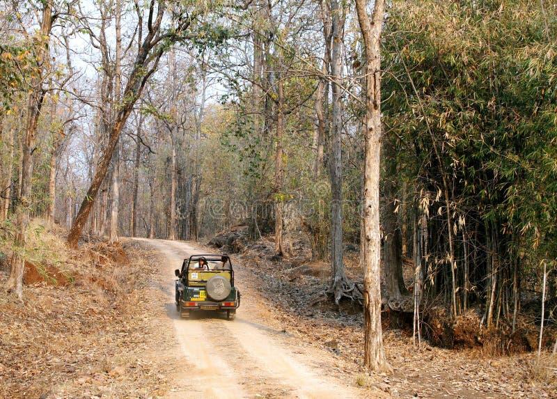 Turystyczny chodzenie w safari dżipie w Pench tygrysa rezerwie obrazy stock