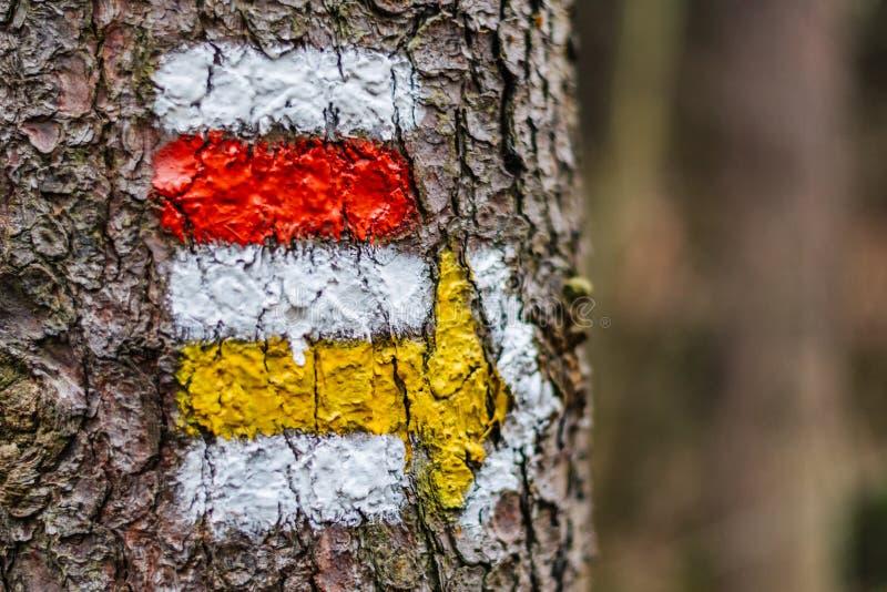 Turystyczny koloru znak na drzewie z strzała obraz stock