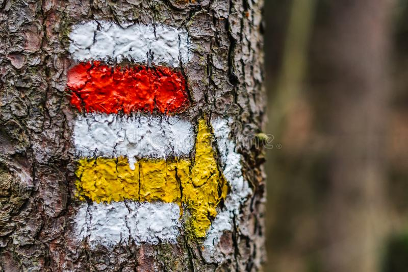 Turystyczny koloru znak na drzewie z strzała fotografia stock