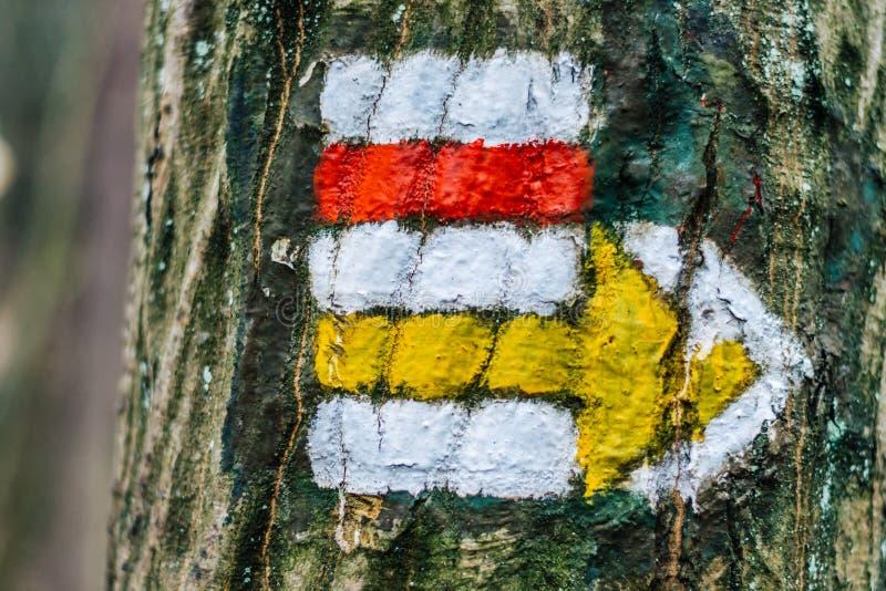 Turystyczny koloru znak na drzewie z strzała zdjęcie stock