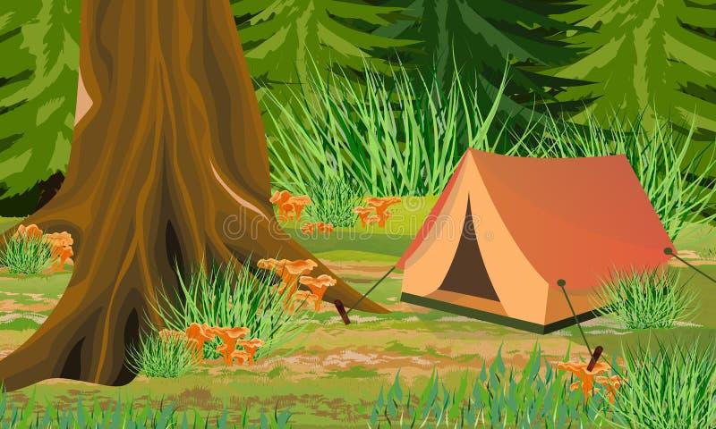 Turystyczny namiot w jesień lasowych bagażnikach mgła i drzewa, las pieczarek chanterelles, kamienie ilustracja wektor