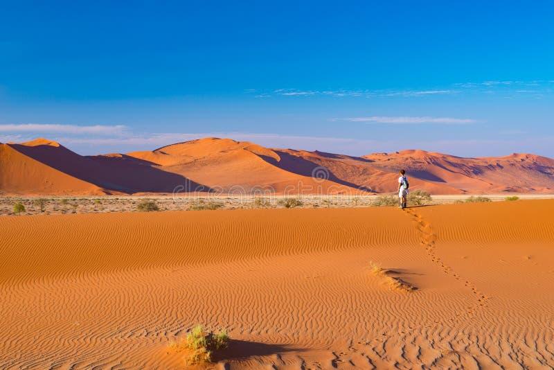 Turystyczny odprowadzenie na piasek diunach przy Sossusvlei, Namib pustynia, Namib Naukluft park narodowy, Namibia Podróżni ludzi obrazy stock