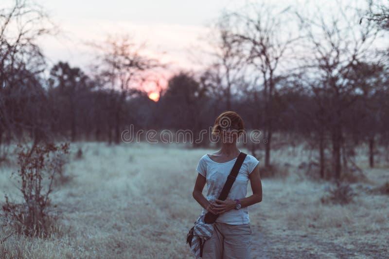 Turystyczny odprowadzenie w krzaku akacja gaju przy zmierzchem i, Bushmandland, Namibia Przygoda i eksploracja w Afryka obraz ton zdjęcia royalty free