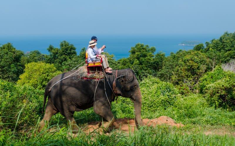 Turystyczny ono pozbywa się słonia odprowadzenie w lesie zdjęcia royalty free