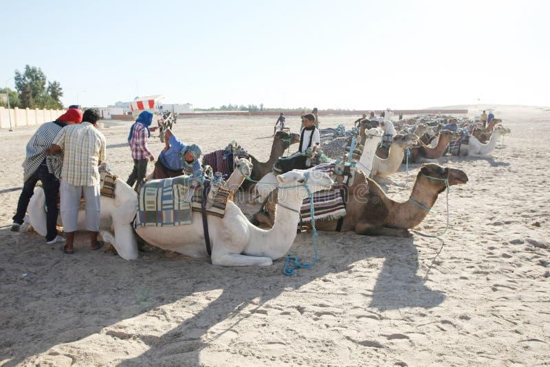 Turystyka w Douz zdjęcie stock