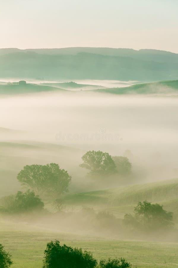 Tuscan τομέας στην υδρονέφωση πρωινού στοκ εικόνες