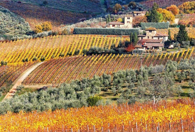 tuscan photos libres de droits
