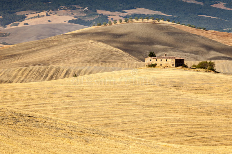 Download Tuscan Countryside After Sunrise, Tuscany, Italy Stock Photo - Image: 26638950