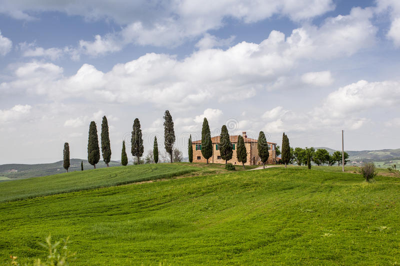Tuscan farm villa. Farm villa in Tuscany with cypress trees royalty free stock images