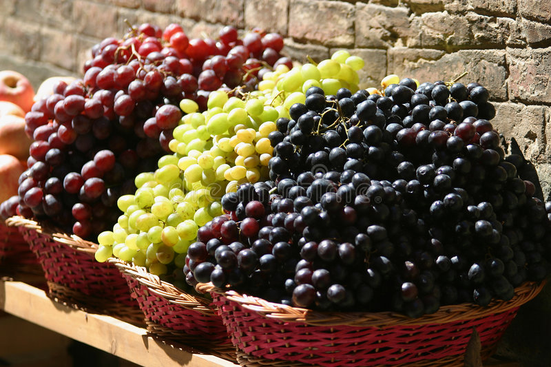 Tuscan Grapes. Grapes on sale in a Tuscan Fruit market, Italy