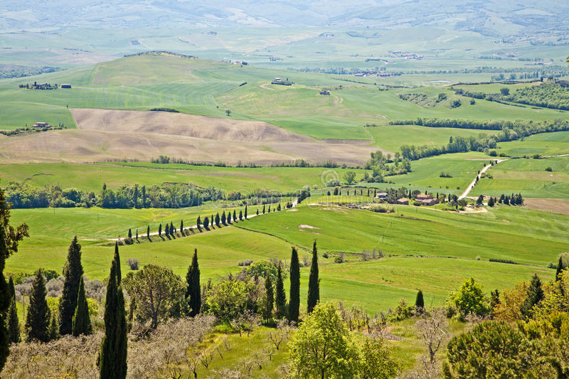 The Tuscan hills royalty free stock photo