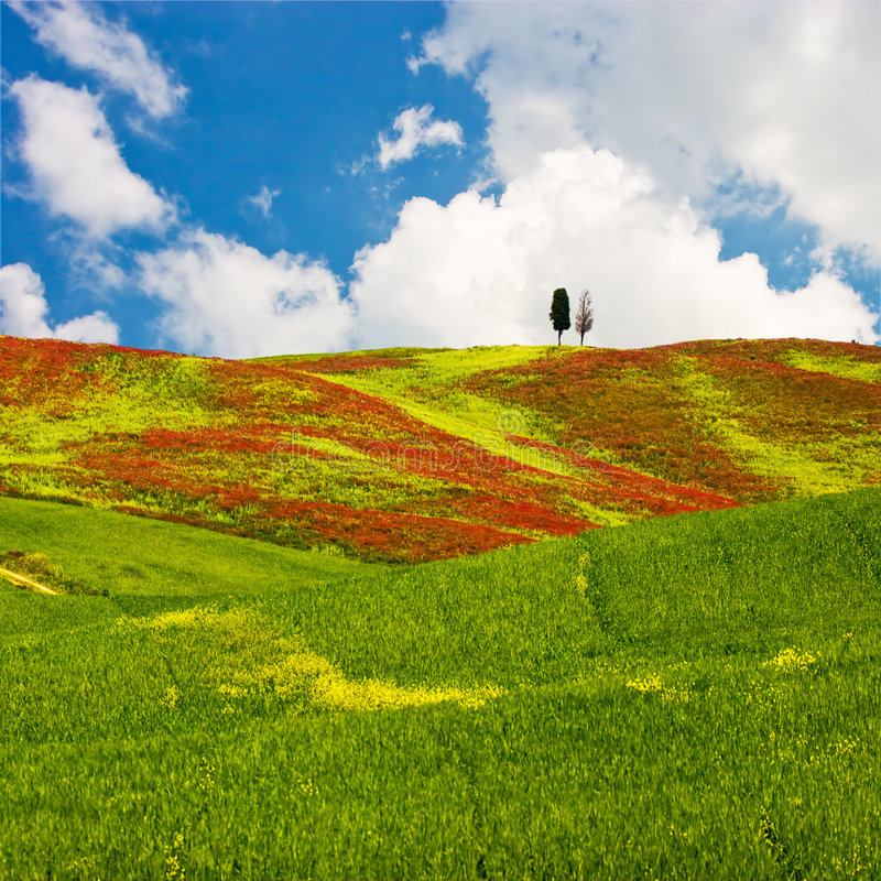 Download Tuscan Landscape stock image. Image of environment, clouds - 2687843