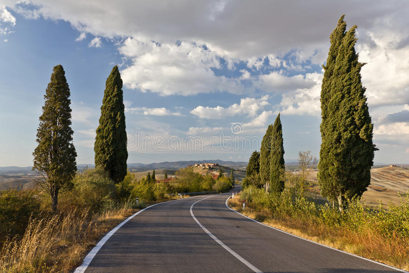 Download Tuscan Road stock photo. Image of transport, fields, hills - 23079930