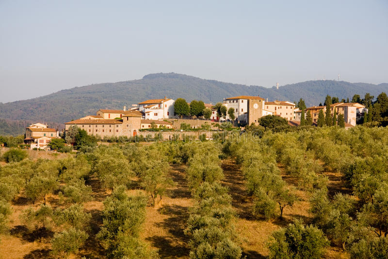 Tuscan Town And Olive Trees Royalty Free Stock Photography