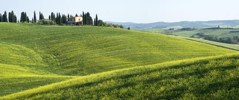 Tuscan typowy krajobraz obraz stock