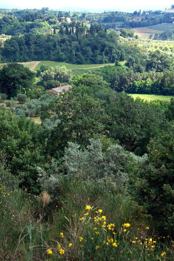 Tuscan View stock photos