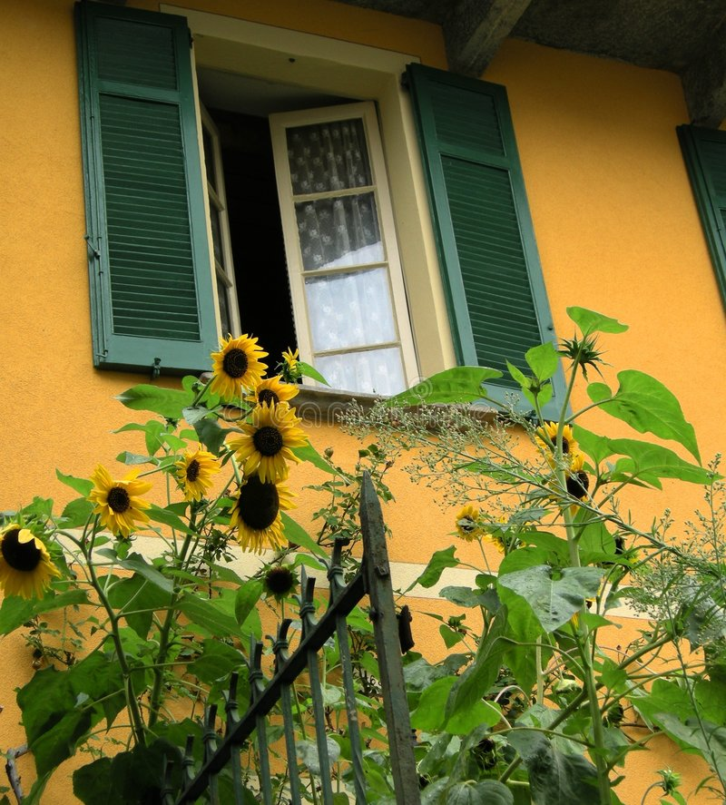 Tuscan villa with sunflowers Tuscany. A view of a Tuscan house and garden in romantic Tuscany country with sunny sunflowers and a window with typical shutters on royalty free stock photography