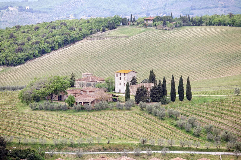 Tuscan vineyards. And rural houses in Province of Siena, Tuscany, Italy. Tuscany is home to some of the world's most notable wine regions, Chianti, Brunello di royalty free stock photo