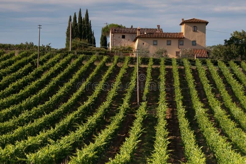 Tuscan vingård och lantbrukarhem arkivfoto
