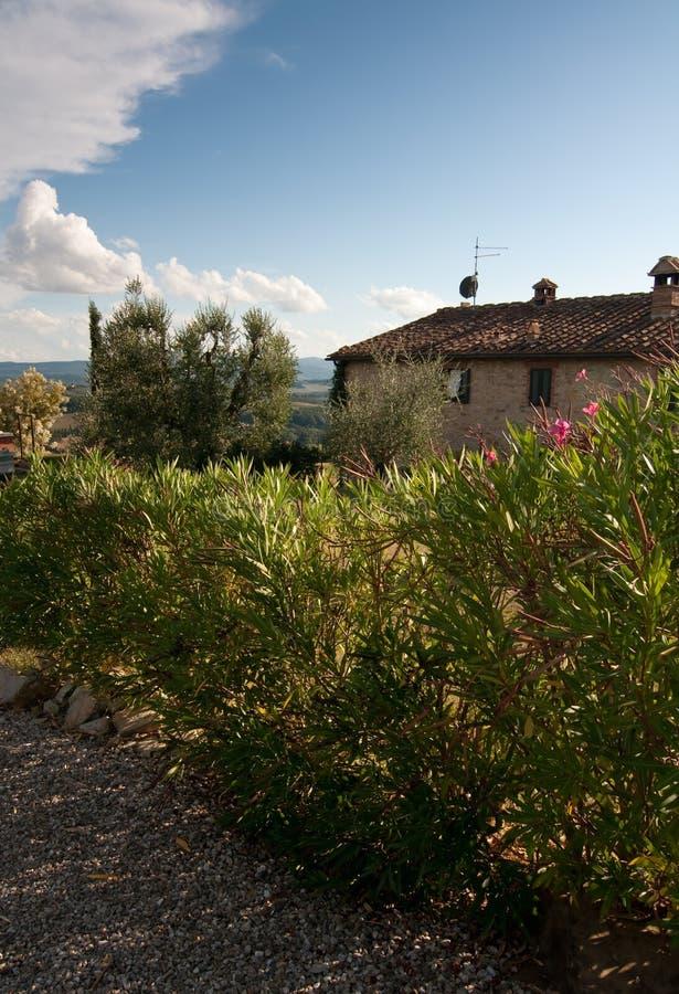 Tuscany royalty free stock photography